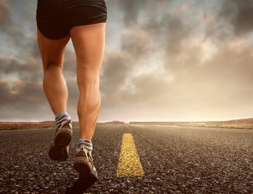 Vectors of Motivation