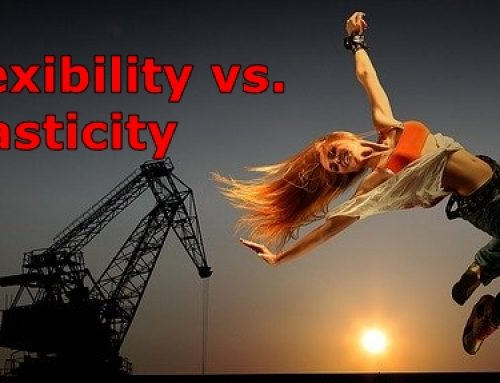 Flexibility vs. Plasticity