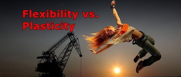 Flexibility-vs-Plasticity